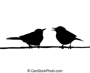 rama, dibujo, sentado, aves, vector, dos