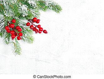 ramas, árbol, decoración, bayas, navidad, rojo