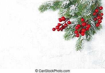 ramas, árbol, plano de fondo, blanco, bayas, navidad, rojo