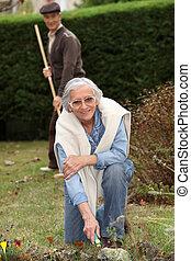 ramassage, couple, feuilles