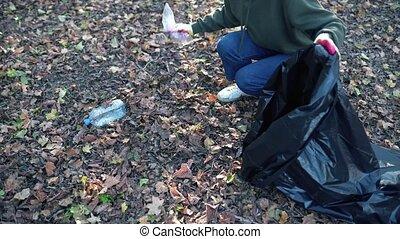 ramassage, girl, plis, déchets, bouteilles, sacs, visit., nettoyage, environment., humain, nature, organisé, après