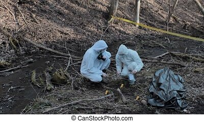 ramassage, investigation., scene., expertise., spécialistes, détectives, légal, confection, évidence, officiers, police, crime