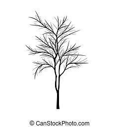 rami, albero, morto