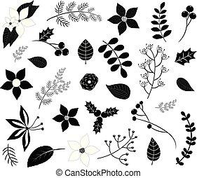 rami, inverno, isolato, foglie, fiori, silhouette, nero, fogliame, bianco, bacche