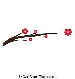 ramo, albero, fiori