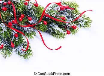 ramo, albero, fondo, natale, bianco