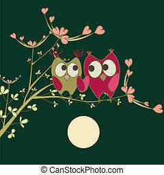 ramo, amor, corujas