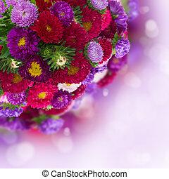 ramo, aster, bokeh, plano de fondo, flores frescas