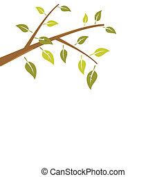 ramo, astratto, albero, isolato, fondo, bianco