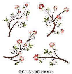 ramo, desenho