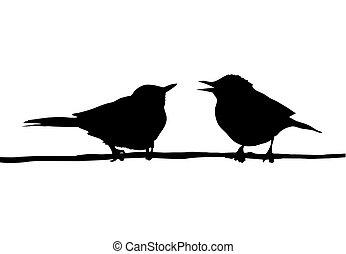 ramo, desenho, sentando, pássaros, dois