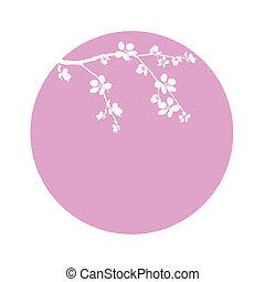 ramo, fiore, cerchio, ciliegia, bello
