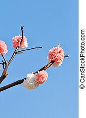ramo, flor, artificial
