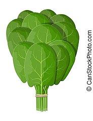 ramo, leaves., espinaca