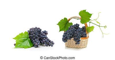 ramo, maduro, uvas, con, hojas, en, un, cesta de mimbre, blanco, plano de fondo