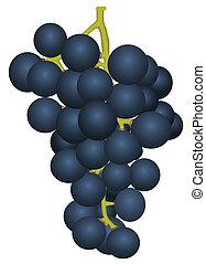 ramo, maduro, uvas