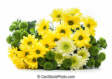 ramo, primavera, aislado, white., flores frescas