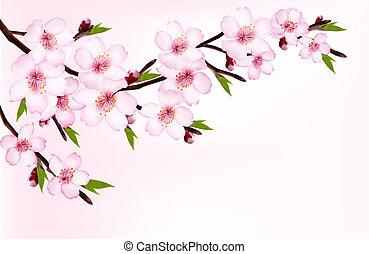 ramo, primavera, fioritura, albero, flowers., fondo, vector.