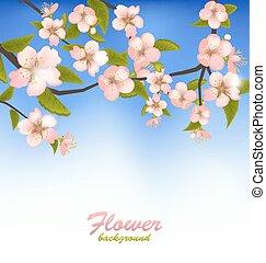 ramo, primavera, fioritura, albero, fondo, fiori