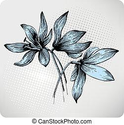 ramo, primavera, hand-draw, scilla