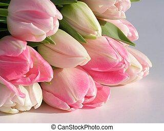 ramo, rosa, tulipanes