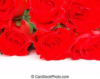 ramo, rosas rojas