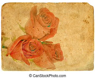 ramo, roses., viejo, postcard.