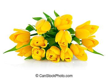 ramo, tulipán, flores, amarillo