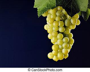 ramo, uva, con, hojas