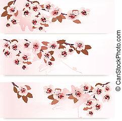 ramos, bandeiras, florescer, vetorial, três, flowers., illustration., cor-de-rosa, primavera