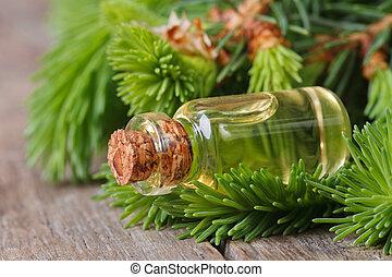 ramos, closeup, asseado, jovem, aromático, óleo
