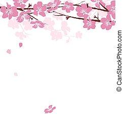 ramos, com, flores, isolado, branco