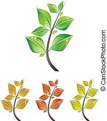 ramos, de, folhas