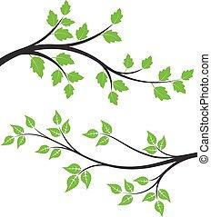 ramos, folhas, par, verde, floral, seu, design.