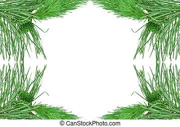 ramos, pinho