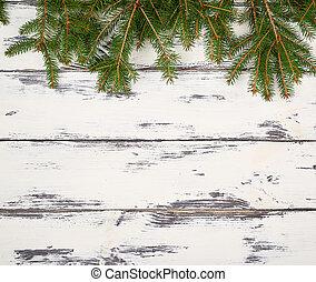 ramos, roto, agulhas, experiência verde, branca, placas
