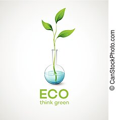 ramoscello, vettore, ecological., illustrazione, flask.