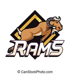 rams banner illustration design