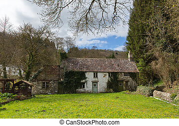 Ramshackle derelict rural cottage overgrown with plants and moss and left abandoned in an uncared for garden