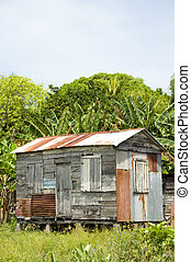 ramshackle zinc clapboard house jungle Corn Island Nicaragua...