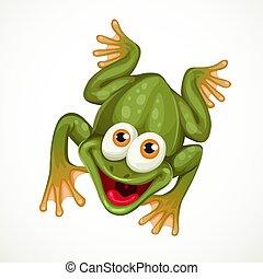 rana, bianco, carino, seduta, cartone animato, fondo, verde