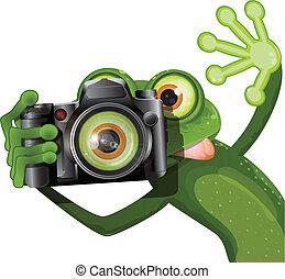 rana, con, uno, macchina fotografica
