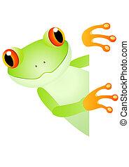 rana verde, y, espacio sin expresión