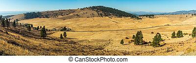 ranchs, elum, sol, cle, paysage, jaunâtre, quelques-uns,...