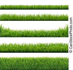 randjes, gras, groene, set, achtergrond