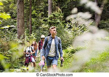 randonnée, ados, sacs dos, forest., vacation., été