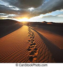 randonnée, dans, désert