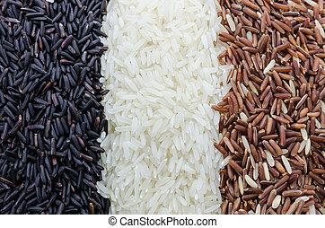 rangées, variétés, nourriture, trois, fond, riz