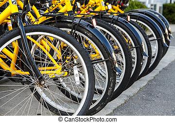 rang, de, jaune, bicycles