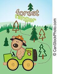 ranger., bosque